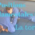 Positions fondamentales la tortue jiu jitsu jjb