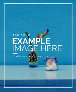 Sample-Image-1-249×300